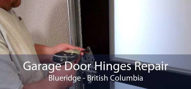 Garage Door Hinges Repair Blueridge - British Columbia