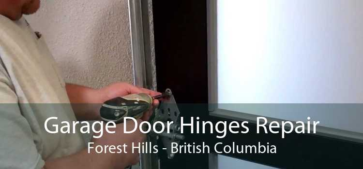 Garage Door Hinges Repair Forest Hills - British Columbia