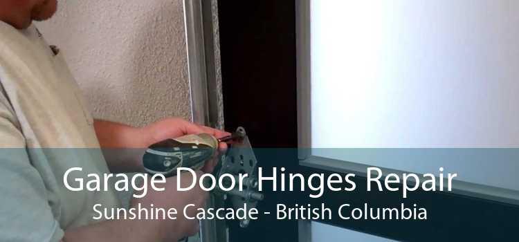 Garage Door Hinges Repair Sunshine Cascade - British Columbia