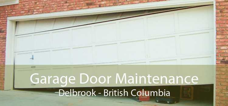 Garage Door Maintenance Delbrook - British Columbia