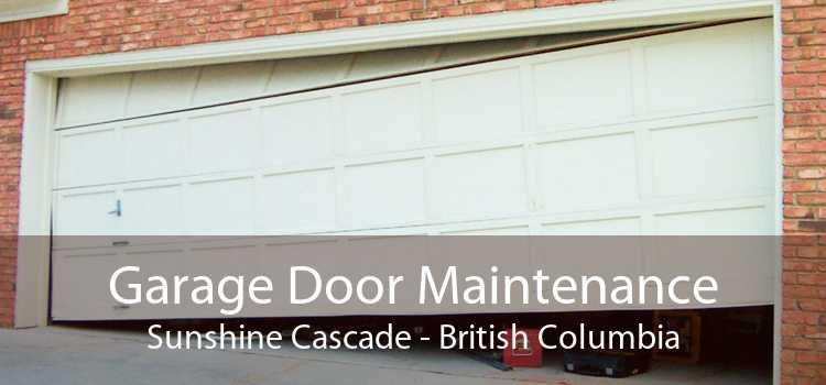 Garage Door Maintenance Sunshine Cascade - British Columbia