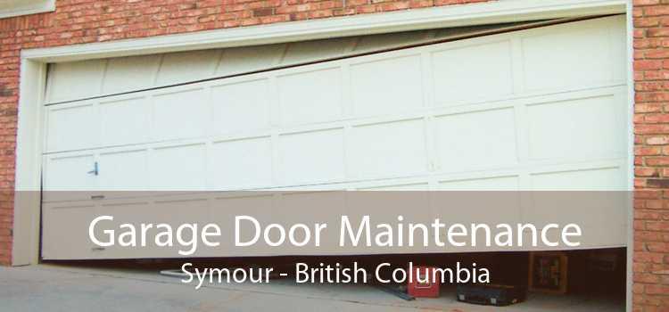 Garage Door Maintenance Symour - British Columbia