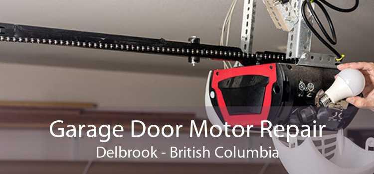 Garage Door Motor Repair Delbrook - British Columbia