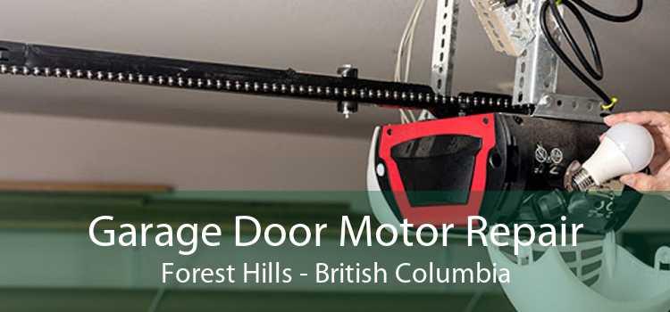 Garage Door Motor Repair Forest Hills - British Columbia