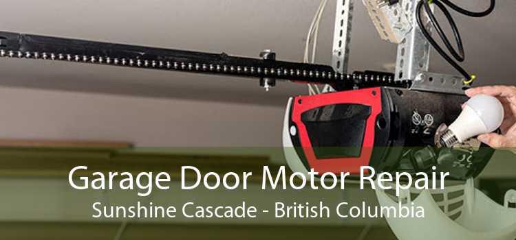 Garage Door Motor Repair Sunshine Cascade - British Columbia