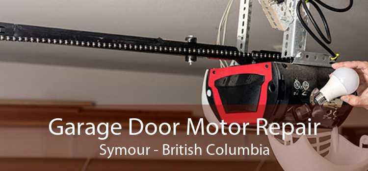 Garage Door Motor Repair Symour - British Columbia