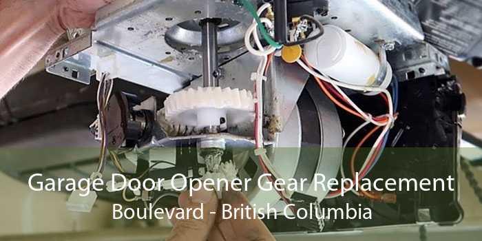 Garage Door Opener Gear Replacement Boulevard - British Columbia