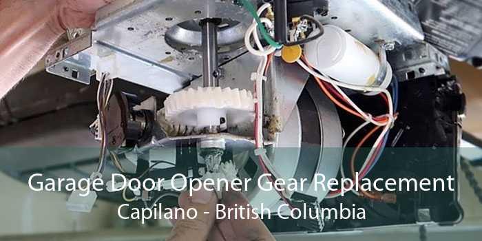 Garage Door Opener Gear Replacement Capilano - British Columbia