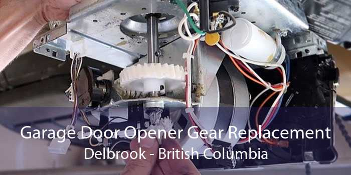 Garage Door Opener Gear Replacement Delbrook - British Columbia