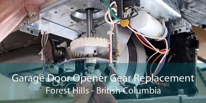 Garage Door Opener Gear Replacement Forest Hills - British Columbia