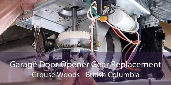 Garage Door Opener Gear Replacement Grouse Woods - British Columbia
