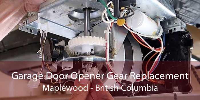 Garage Door Opener Gear Replacement Maplewood - British Columbia
