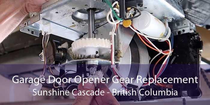 Garage Door Opener Gear Replacement Sunshine Cascade - British Columbia