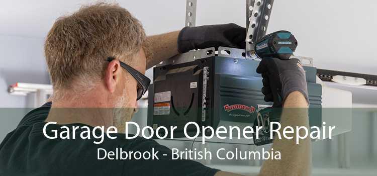 Garage Door Opener Repair Delbrook - British Columbia