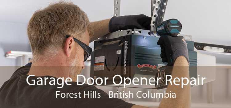 Garage Door Opener Repair Forest Hills - British Columbia