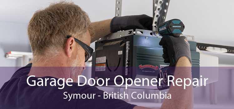 Garage Door Opener Repair Symour - British Columbia