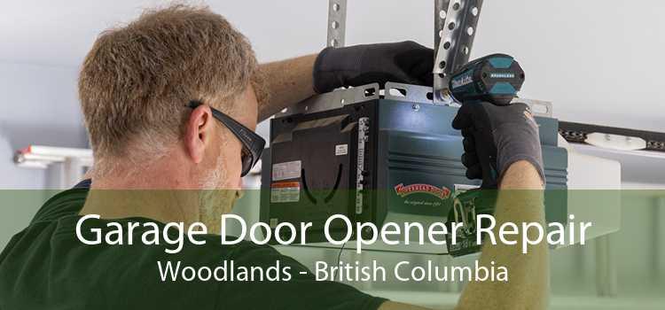Garage Door Opener Repair Woodlands - British Columbia
