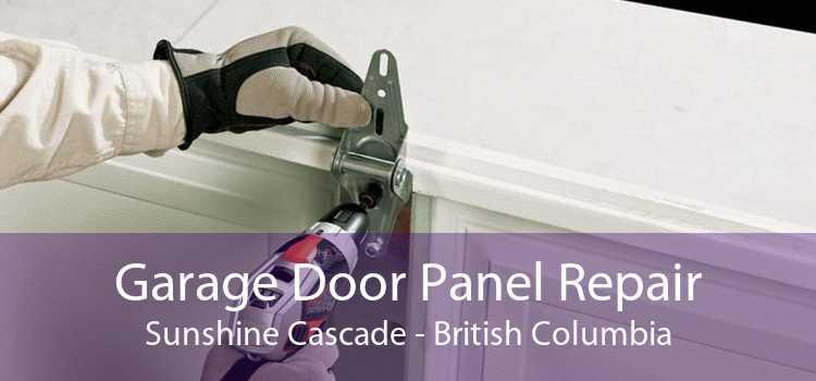 Garage Door Panel Repair Sunshine Cascade - British Columbia