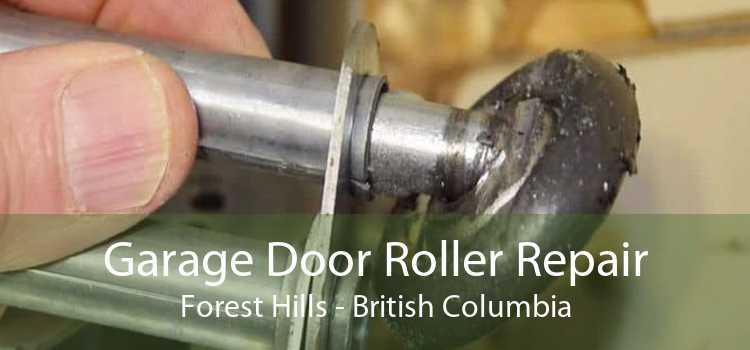 Garage Door Roller Repair Forest Hills - British Columbia