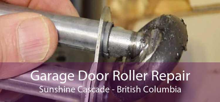 Garage Door Roller Repair Sunshine Cascade - British Columbia