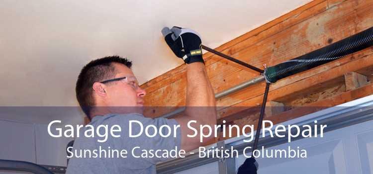 Garage Door Spring Repair Sunshine Cascade - British Columbia