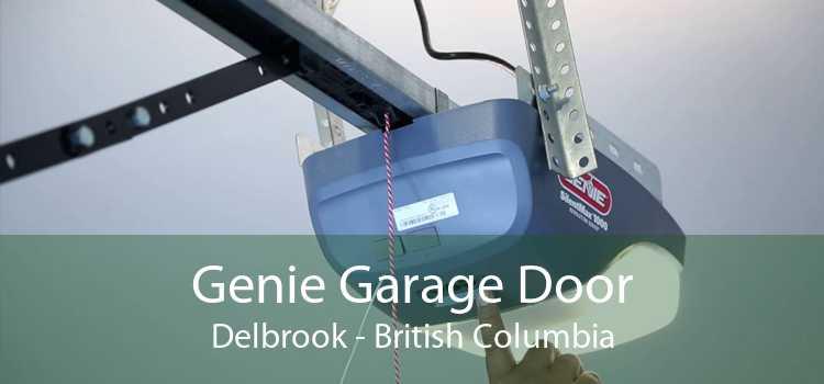 Genie Garage Door Delbrook - British Columbia