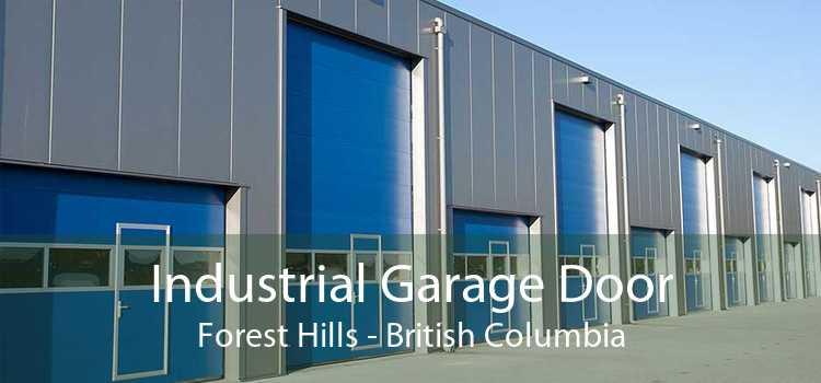 Industrial Garage Door Forest Hills - British Columbia
