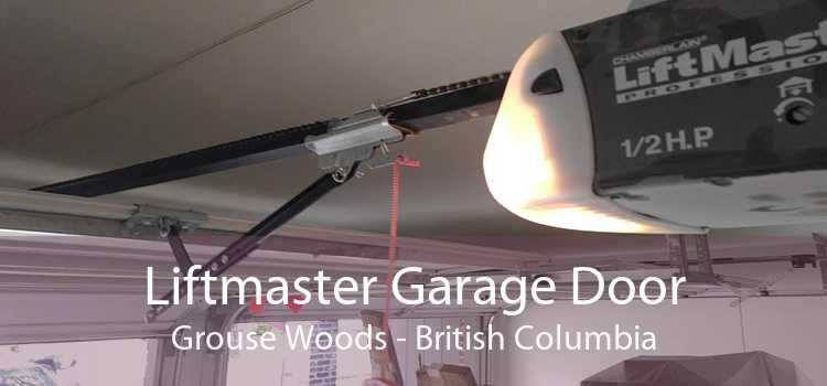 Liftmaster Garage Door Grouse Woods - British Columbia