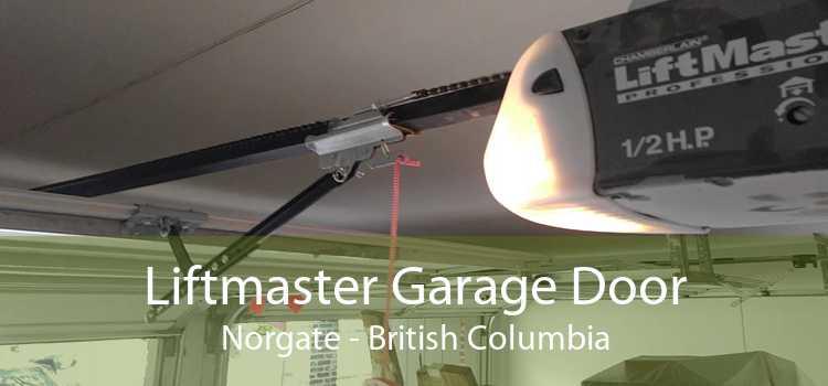 Liftmaster Garage Door Norgate - British Columbia