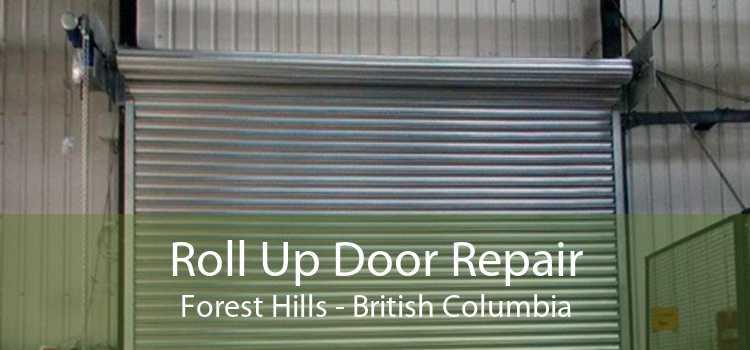 Roll Up Door Repair Forest Hills - British Columbia