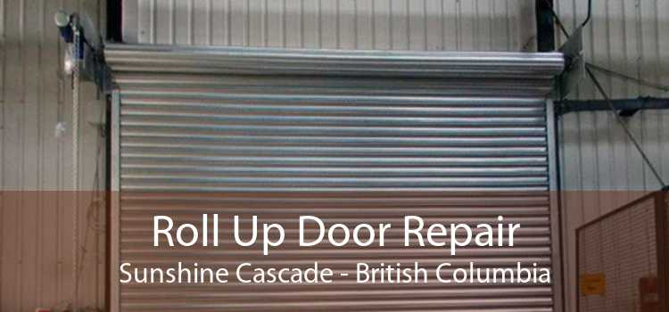 Roll Up Door Repair Sunshine Cascade - British Columbia