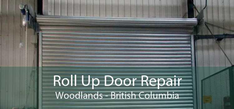 Roll Up Door Repair Woodlands - British Columbia